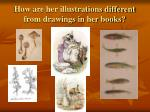 how are her illustrations different from drawings in her books