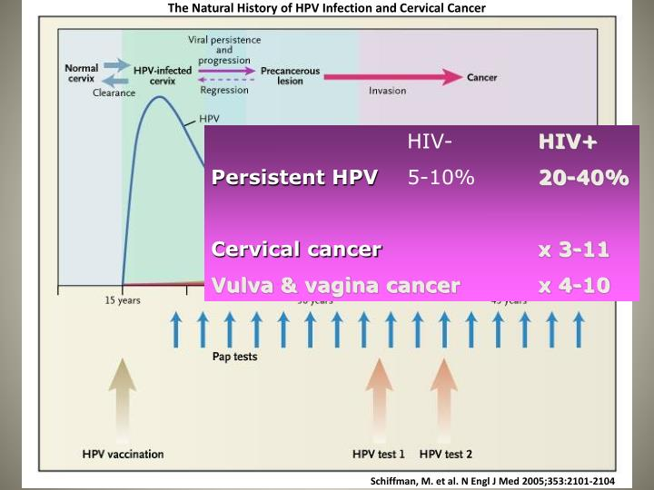 The Natural History of HPV Infection and Cervical Cancer