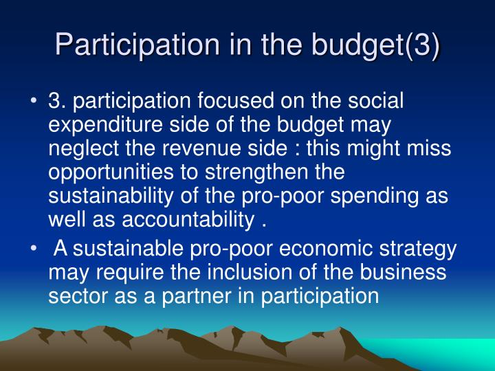 Participation in the budget(3)