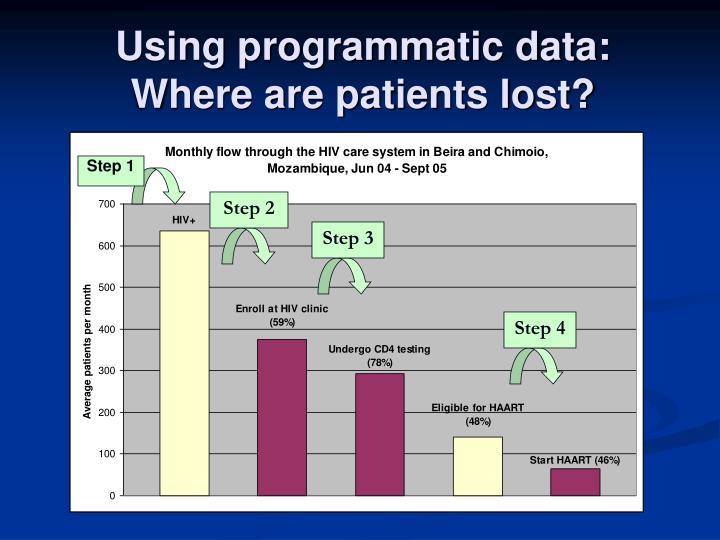 Using programmatic data: