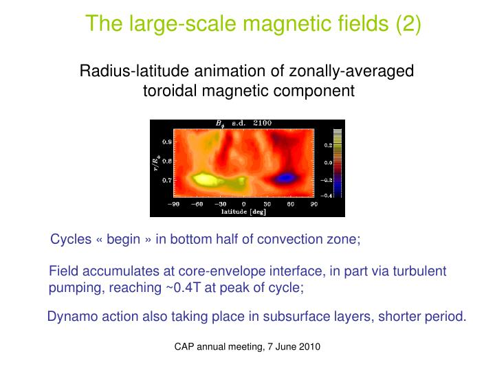 The large-scale magnetic fields (2)