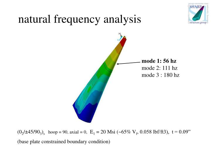 natural frequency analysis
