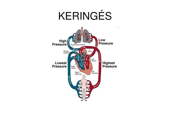 Kering s
