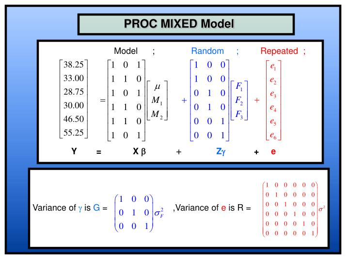 PROC MIXED Model