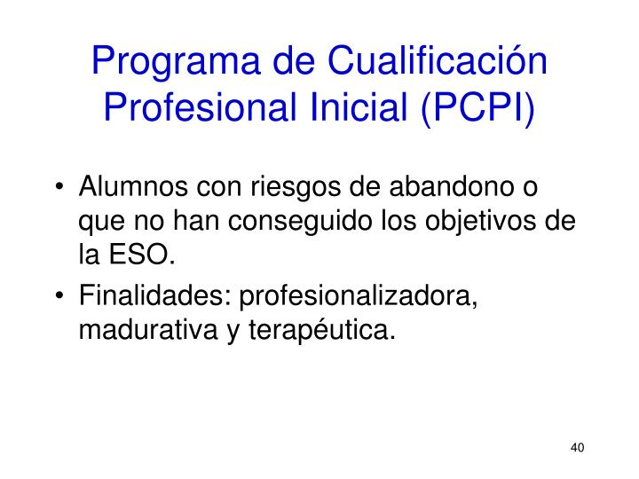 Programa de Cualificación Profesional Inicial (PCPI)