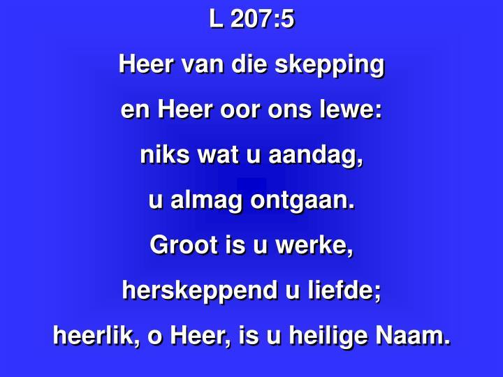 L 207:5