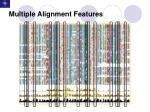 multiple alignment features11