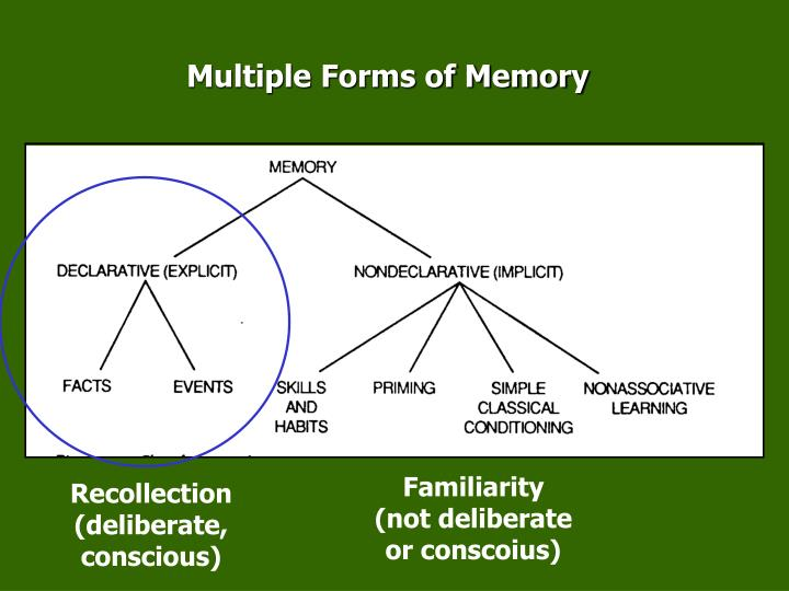 Multiple Forms of Memory