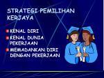 strategi pemilihan kerjaya