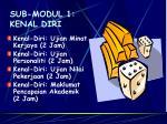 sub modul 1 kenal diri