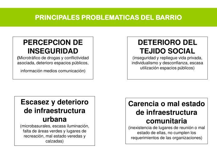 PRINCIPALES PROBLEMATICAS DEL BARRIO