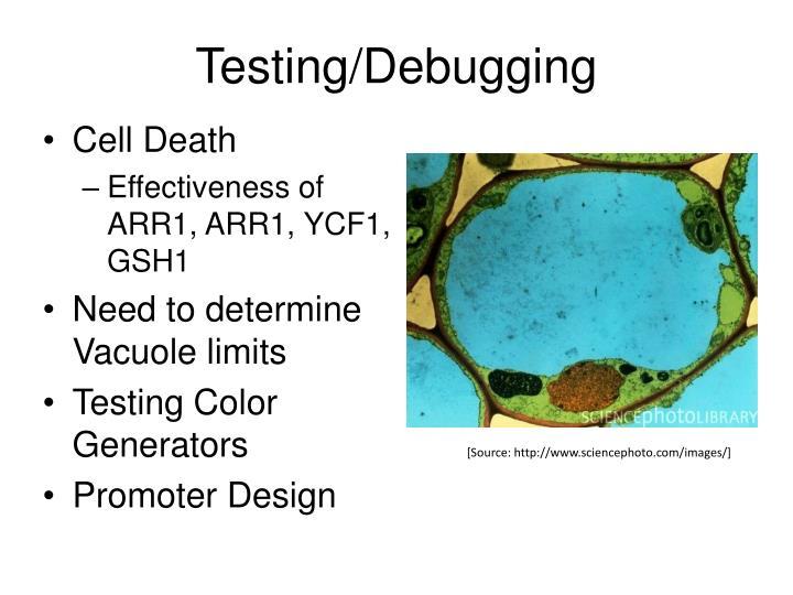 Testing/Debugging