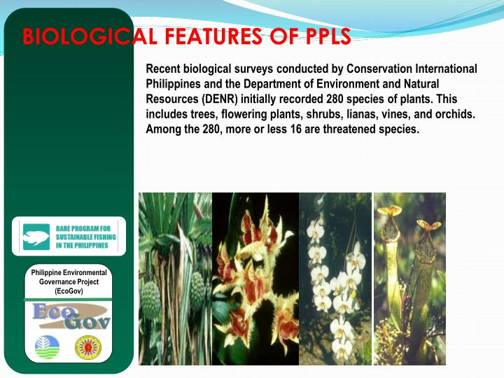 BIOLOGICAL FEATURES OF PPLS