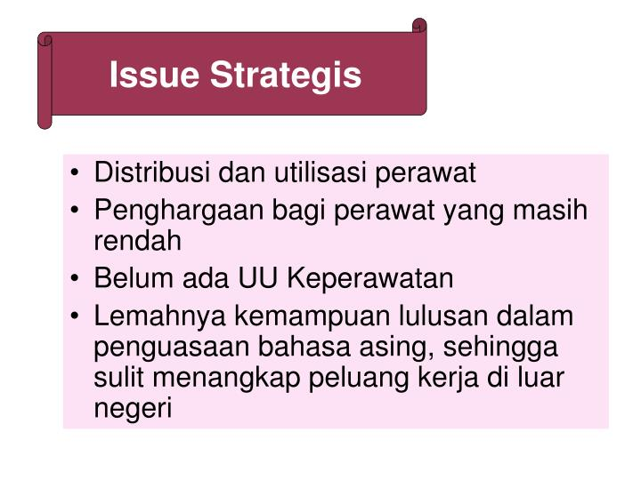 Issue Strategis