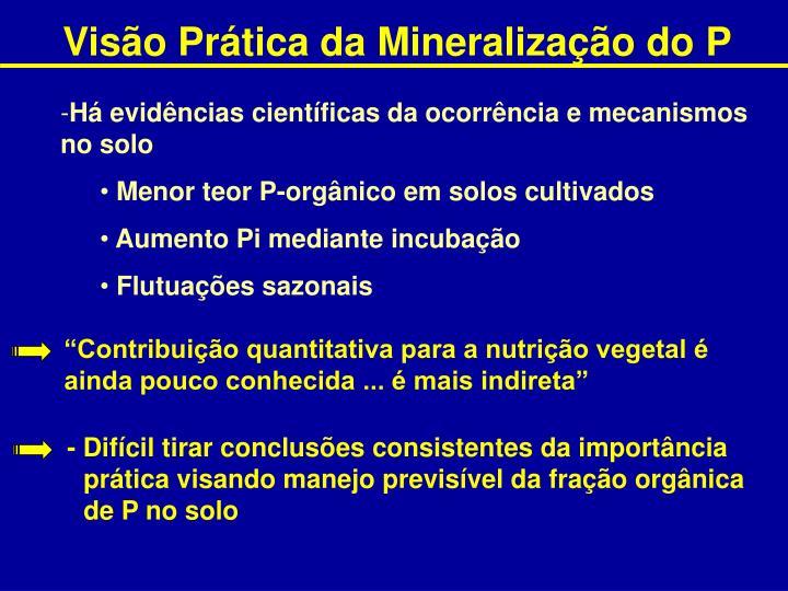 Visão Prática da Mineralização do P