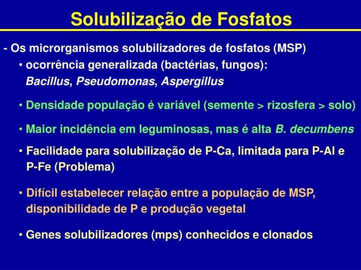 Solubilização de Fosfatos
