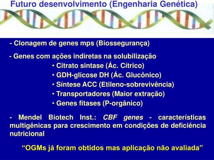 Futuro desenvolvimento (Engenharia Genética)