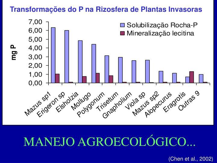 Transformações do P na Rizosfera de Plantas Invasoras