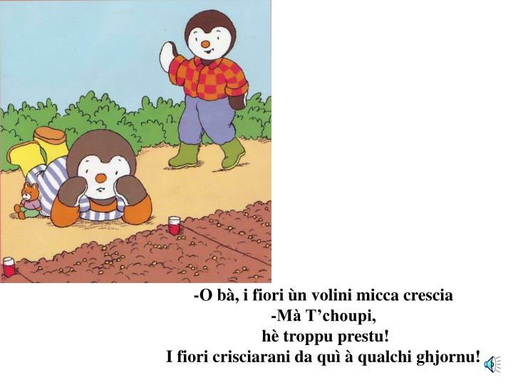 -O bà, i fiori ùn volini micca crescia