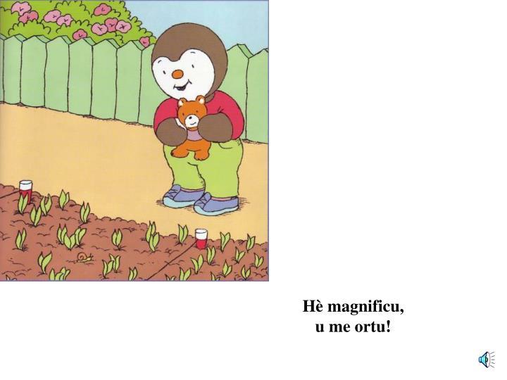 Hè magnificu,