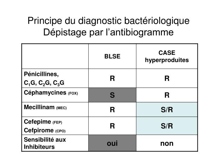 Principe du diagnostic bactériologique
