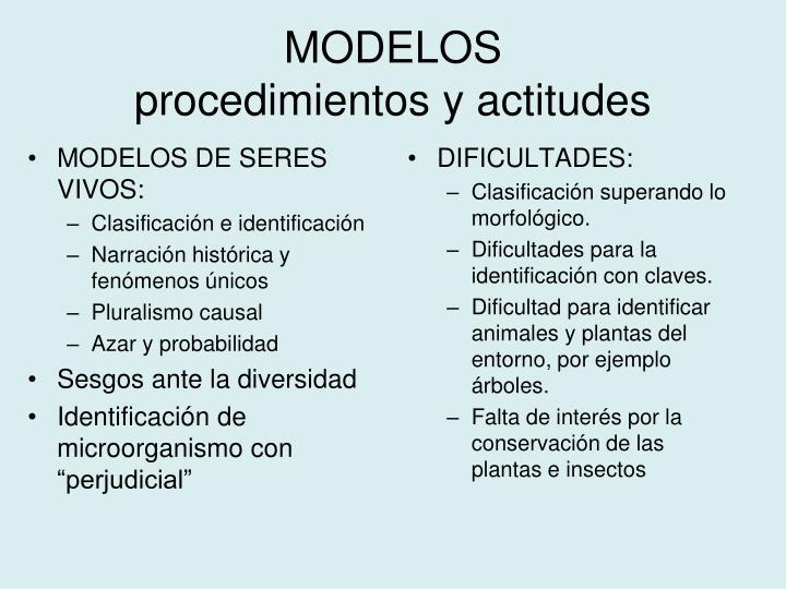 MODELOS DE SERES VIVOS: