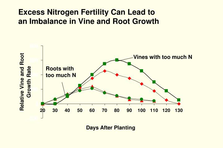 Excess Nitrogen Fertility Can Lead to