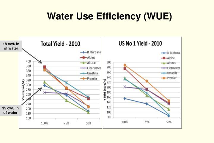 Water Use Efficiency (WUE)