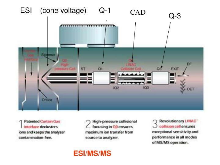ESI    (cone voltage)