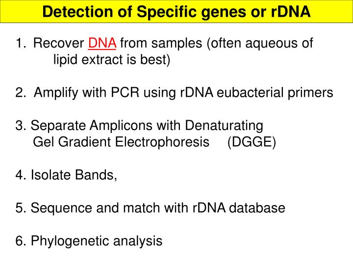 Detection of Specific genes or rDNA