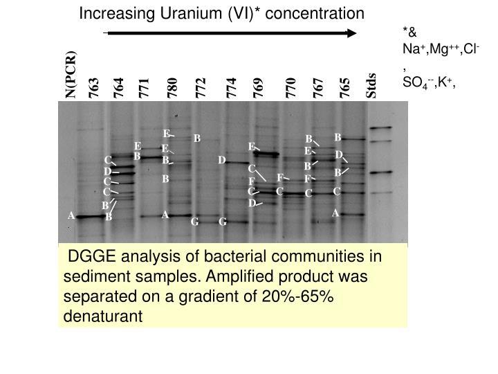 Increasing Uranium (VI)* concentration