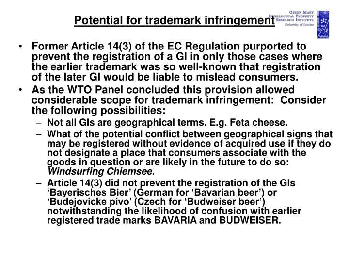Potential for trademark infringement