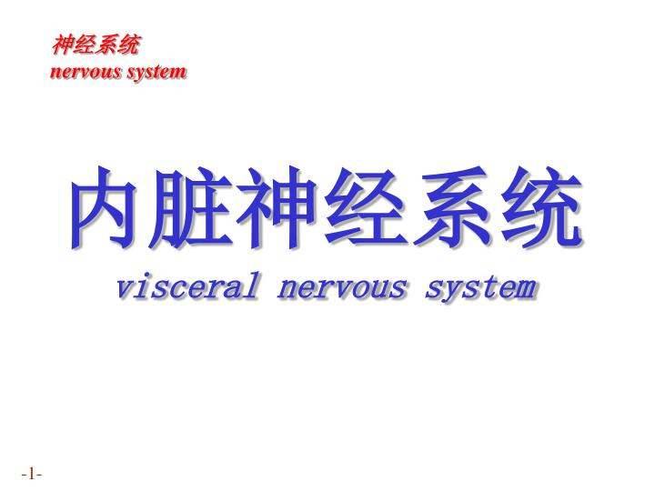 Visceral nervous system