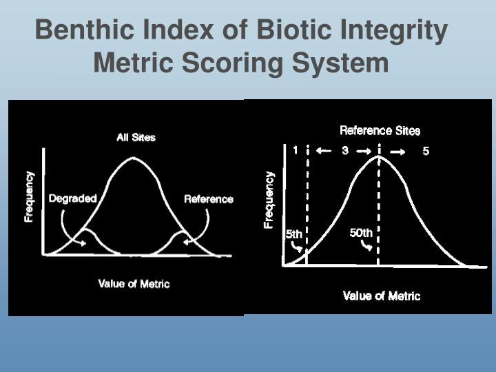 Benthic Index of Biotic Integrity