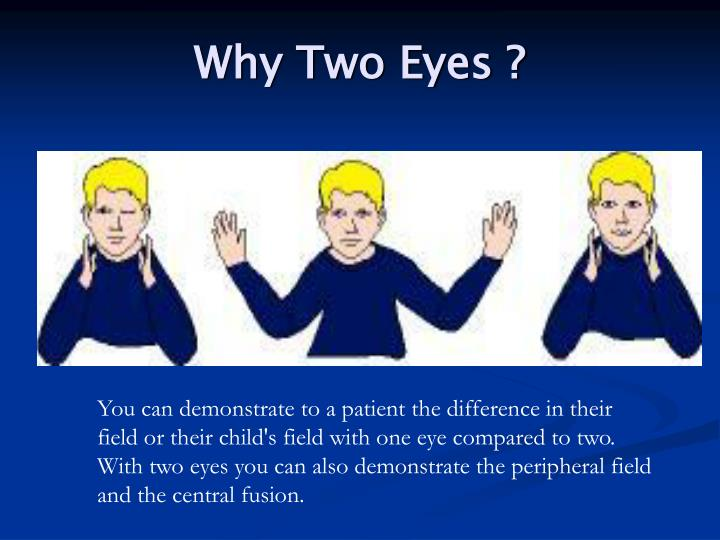 Why two eyes