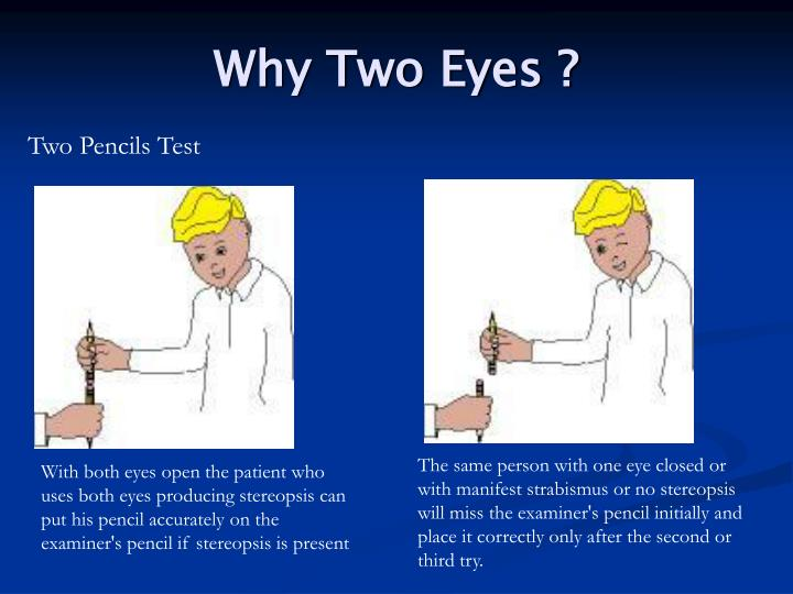 Why Two Eyes ?