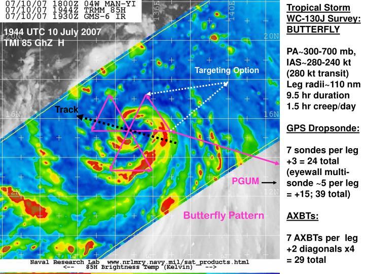 Tropical Storm WC-130J Survey: