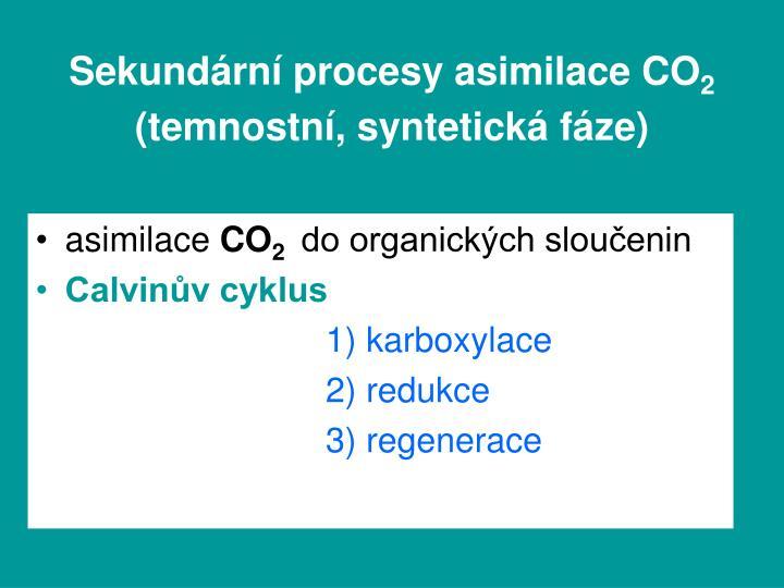 Sekundární procesy asimilace CO