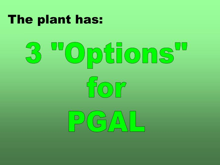The plant has: