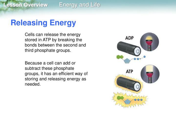 Releasing Energy