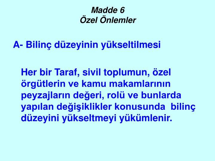 Madde 6