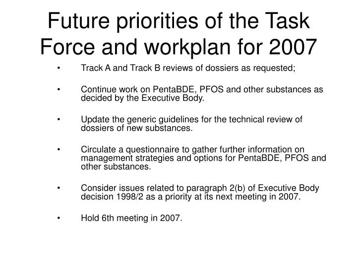 Future priorities of the Task Force and workplan for 2007