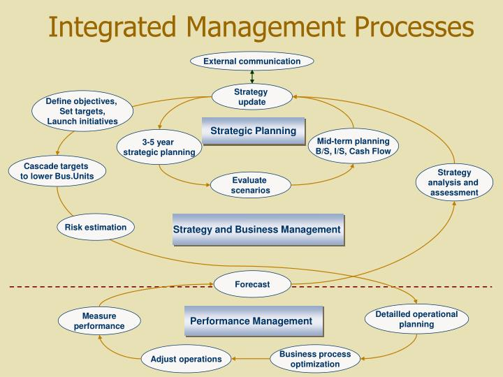 Integrated Management Processes