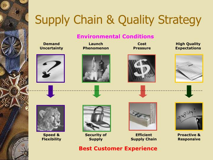 Supply Chain & Quality Strategy