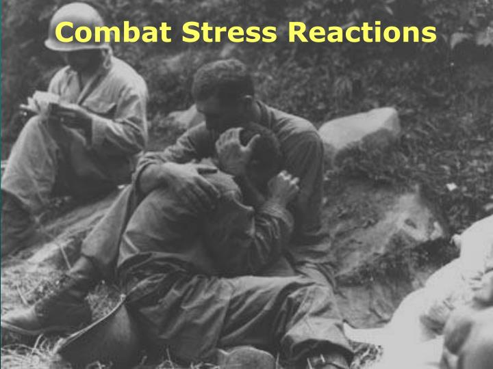 Combat Stress Reactions