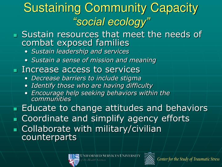 Sustaining Community Capacity