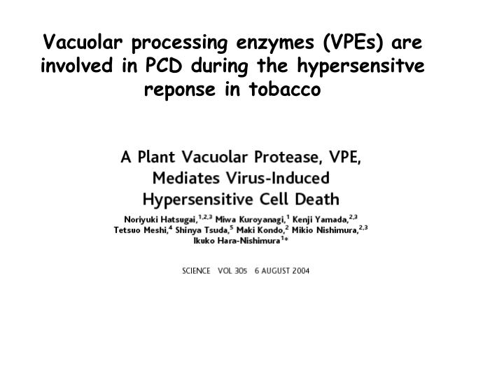 Vacuolar processing enzymes (VPEs) are involved in PCD during the hypersensitve reponse in tobacco