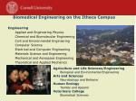 biomedical engineering on the ithaca campus