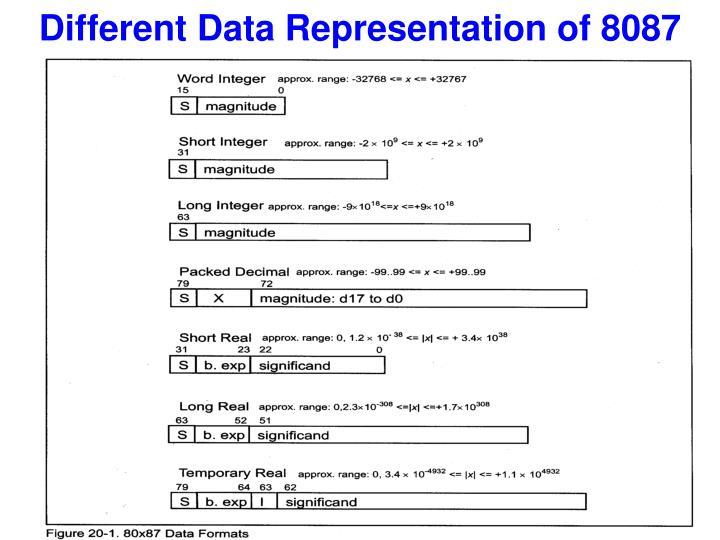 Different Data Representation of 8087