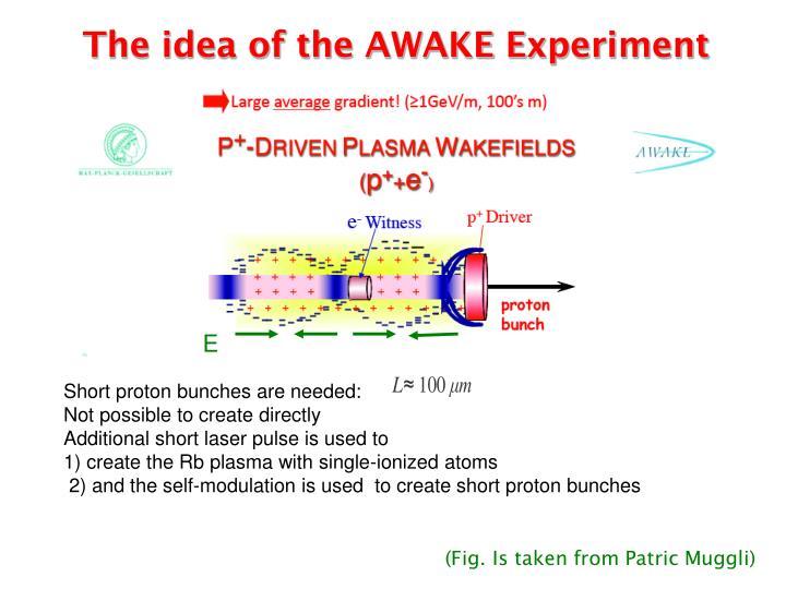 The idea of the AWAKE Experiment
